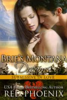 Substance B Cover of Brie's Montana Dreams