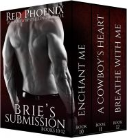 Substance B Cover of Brie's Submission: Books 10–12