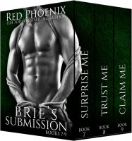 Substance B Cover of Brie's Submission: Books 7–9