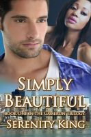 Substance B Cover of Simply Beautiful
